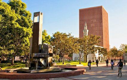 образование в лос анджелесе