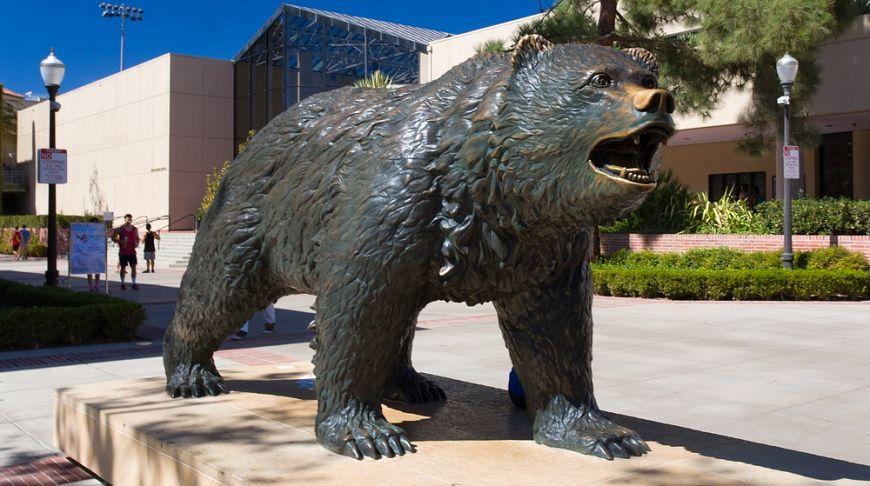 калифорнийский университет в лос анджелесе