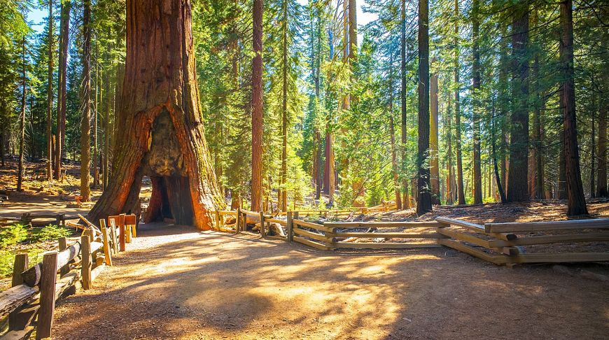 красивые места в калифорнии