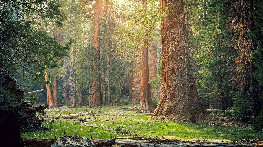 красивые места калифорнии