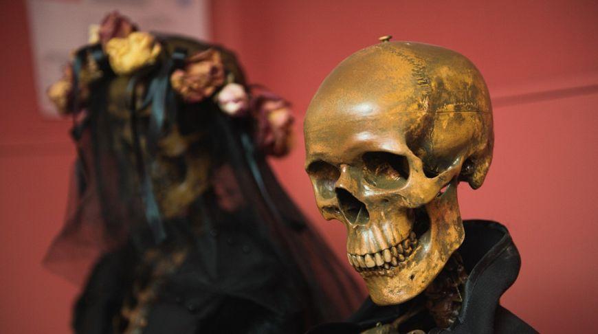 скелет в костюме