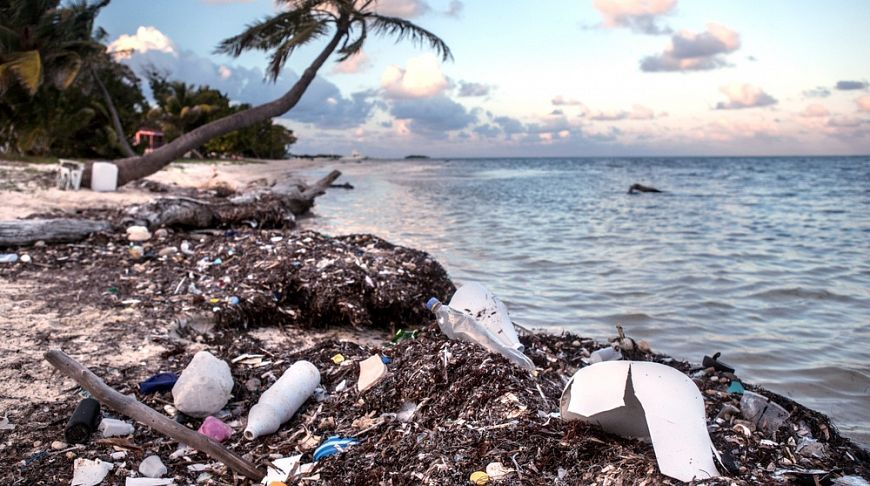 загрязненный берег океана