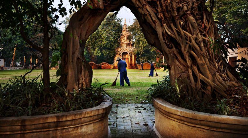 Храм за деревом, Тайланд