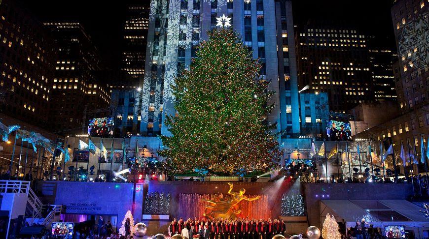 елка Нью-Йорка