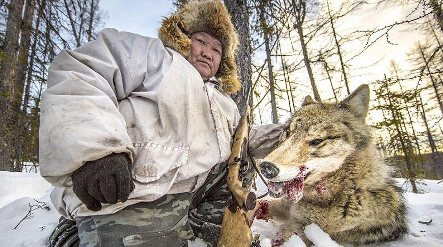 Охотник с головой волка