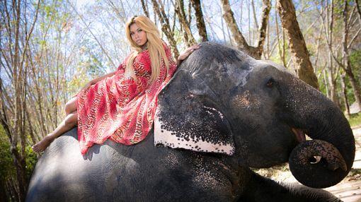 «Ледибои — самые привлекательные женщины!»: тайские транссексуалы в объективе fashion-фотографа