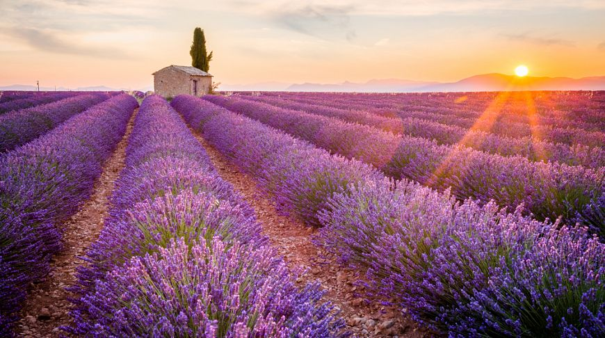 Картинки на французском языке о природе, доброй ночи тебе