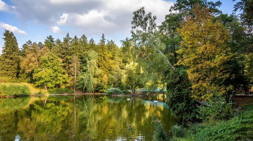 Самые красивые дендропарки Украины, которые стоит посетить до конца осени