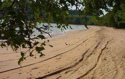 тайланд пляжи паттайи