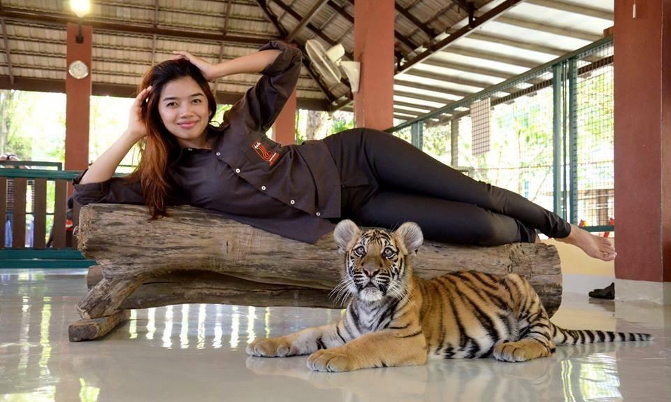 Парк «Королевство тигров» (Tiger Kingdom Phuket) на Пхукете