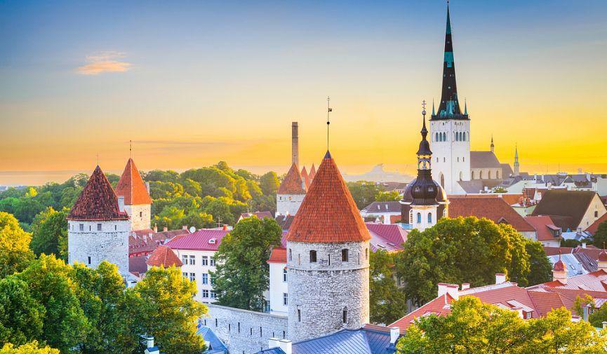 Страна газонов и Интернета: как получить ВНЖ, стать «электронным» гражданином и открыть бизнес в Эстонии